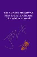 The Curious Mystery (ebook)